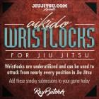 Aikido Wristlocks For Jiu Jitsu-Ray Butcher