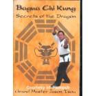 Bagua Chi Kung-Secrets of the Dragon-Jason Tsou