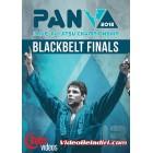 2013 Pan Jiu-jitsu Championship Blackbelt Final