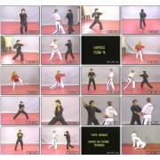 Mastering Hapkido Forms-Fariborz Azhakh
