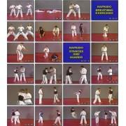 Mastering Hapkido Fundamentals Techniques-Fariborz Azhakh