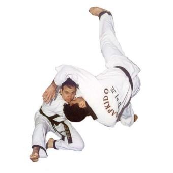 Sin Moo Hapkido Level 1 dan 2