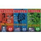 Kyokushin Karate Complete Video Series 3 Vol-Shokei Matsui