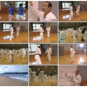 Karate Kumite Technique Seminar 3-Seiji Nishimura