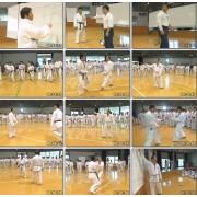 Karate Kumite Technique Seminar-Seiji Nishimura