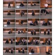 Jissen Kobudo-Jinenkan Bujutsu and Ninjutsu DVD 3-Adam Mitchell