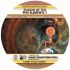 Fusion of the Five Elements-Mantak Chia