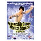 Intermediate Course Nineteen Stances-Wang Hongxin