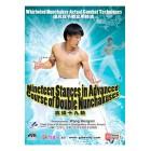 Nineteen Stances in Advanced-Courses of Doubles Nunchakuses-Wang Hongxin