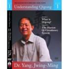 Panduan belajar Qigong-Understanding Qigong-Yang Jwing Ming 6 DVD