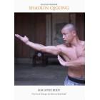 Shaolin Qigong For Upper Body by Sifu Yan Lei