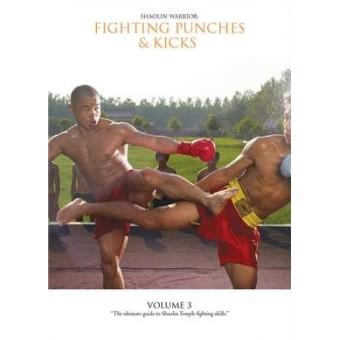 Shaolin Warrior Fighting Punches And Kicks Volume 3 by Sifu Yan Lei