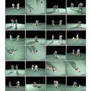 Ken Zen Ichinyo Series-Shorinji Kempo-DVD 2