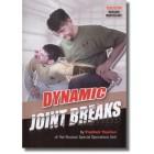 Dynamic Joint Breaks-Vladimir Vasiliev