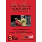 Ip Man Wing Chun Series-Chi Sao Section 4-Sergio Iadarola