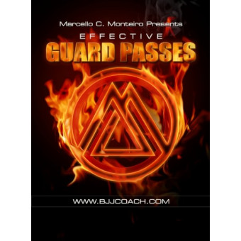 Effective Guard Passes-Marcelo C. Monteiro