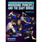 A General Introduction to Mirroring Principle and The Baby Bridge by Wim Deputter