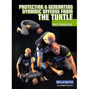 Protecting and Generating Dynamic Offense From The Turtle-Priit Mihkelson