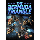 The Bermuda Triangle by Benji Silva