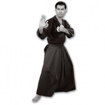 Mastering Aikijujutsu DVD 4-Advanced Techniques-Miguel Ibarra