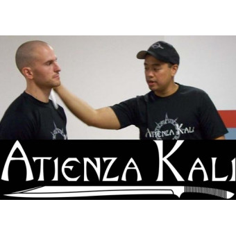 Atienza Kali Single Sword Evolution