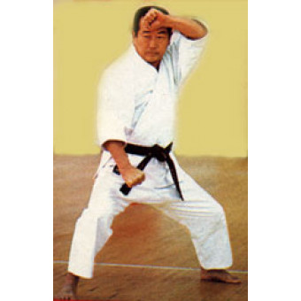 The Dynamic Techniques of Shotokan Karate Vol1-2-Masatoshi Nakayama