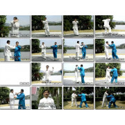 Chinese Yi Quan-The Rudiment To Exerting Force-Zhang Guangyu