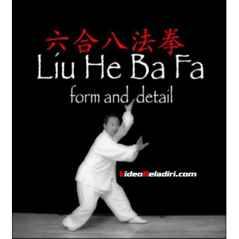 Liu He Ba Fa Forms and Detail-Liu Xiao Ling