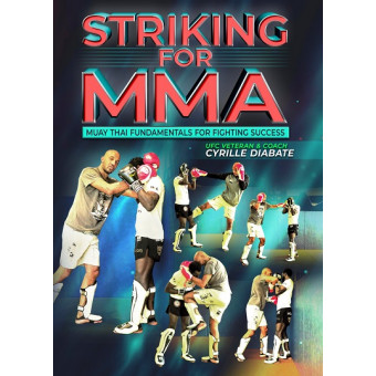 Striking For MMA by Cyrille Diabate