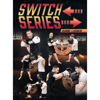 Switch Series by Duane Ludwig