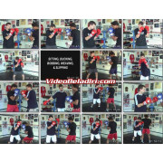 Ultimate Boxing Lessons-Christopher Getz 8 DVD Set
